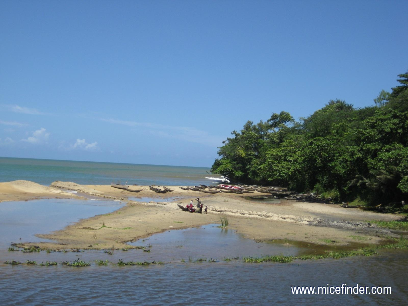 http://www.micefinder.com/images_pays/meeting_incentive_congress_convention_event_incentive_madagascar_barques_de_peche_a_Mahanoro_-_cote_est_h.jpg